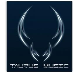 Pokrowiec na zamówienie marki Taurus Music